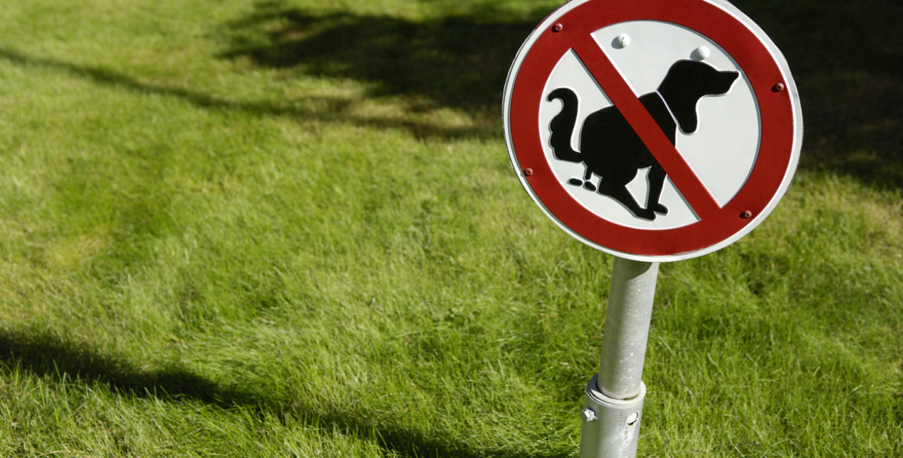 No dog poo sign via iStock / acilo
