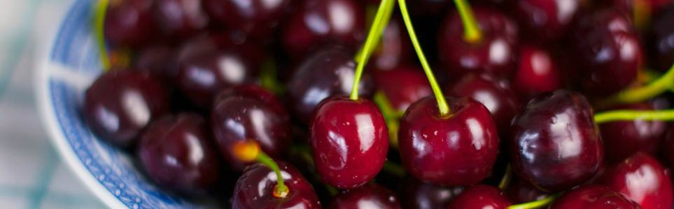 City Cherry Orchards Ripe for Harvest in July