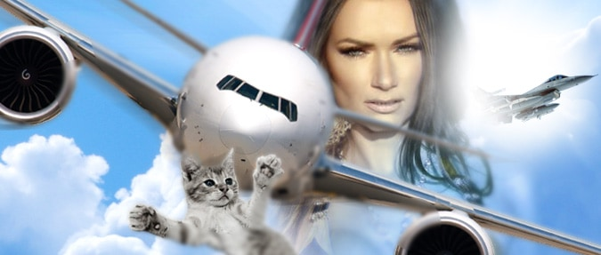 Czech Model Brings Down Plane with Cat Tantrum