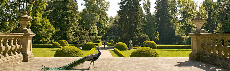 Discover Hidden Czech Gardens & More This Weekend