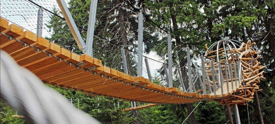 Zoom Down Giant Antler Slides for Free On New Czech Trail