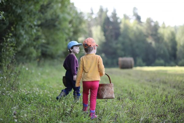 Children gathered in a hike in the nearest forest in search of mushrooms