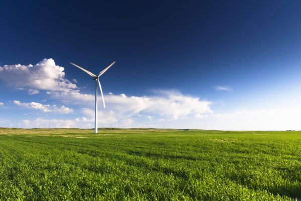 A wind turbine standing in a field