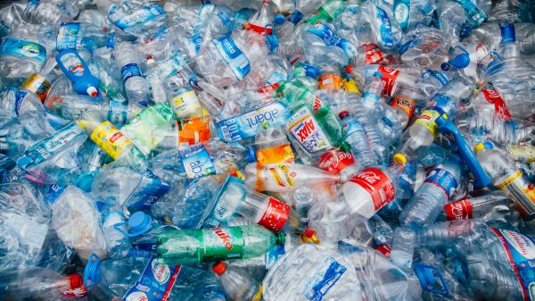 Plastic bottles in a recycling plant (illustrative image)