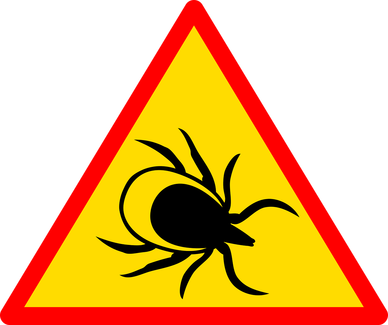 , Despite coronavirus lockdown, tick-borne infections are on the rise in the Czech Republic, Expats.cz Latest News & Articles - Prague and the Czech Republic, Expats.cz Latest News & Articles - Prague and the Czech Republic