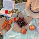 Savor the seasonal flavor: Summertime fruits in the Czech Republic