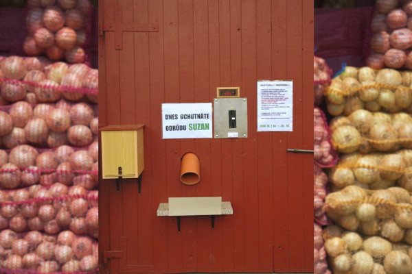 A potato vending machine at Vesa Velhartice near the Czech-Austrian border. Photo: Vesa Velhartice, a.s.