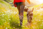 Girl walking with her dog on meadow, summer landscape.
